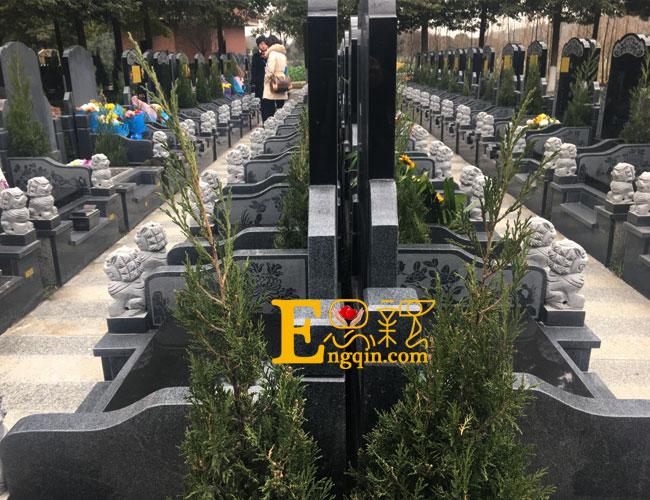 温江大朗陵园价格